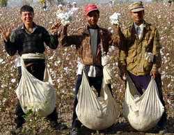 Волны международной миграции рабочей силы и их основные особенности
